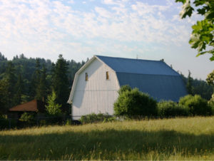 White historical barn